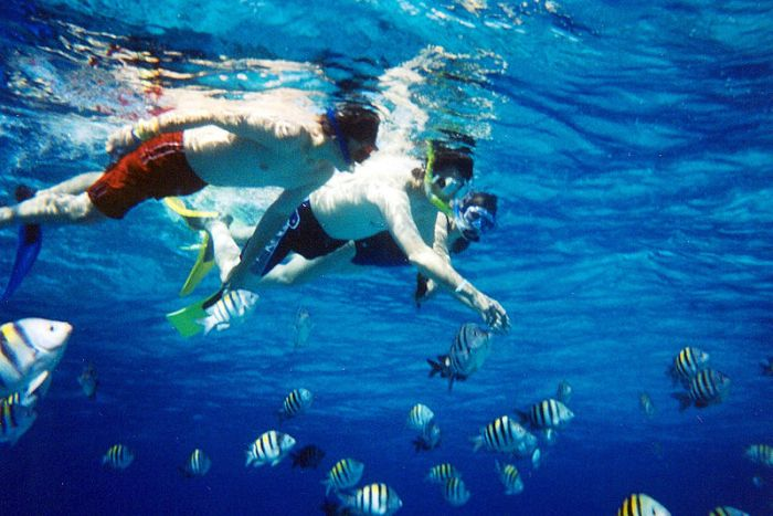 Snorkeling fun together (Photo: Wikipedia)