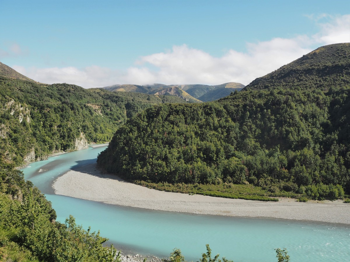 TranzAlpine Train Ride - Is it Worth the Price?