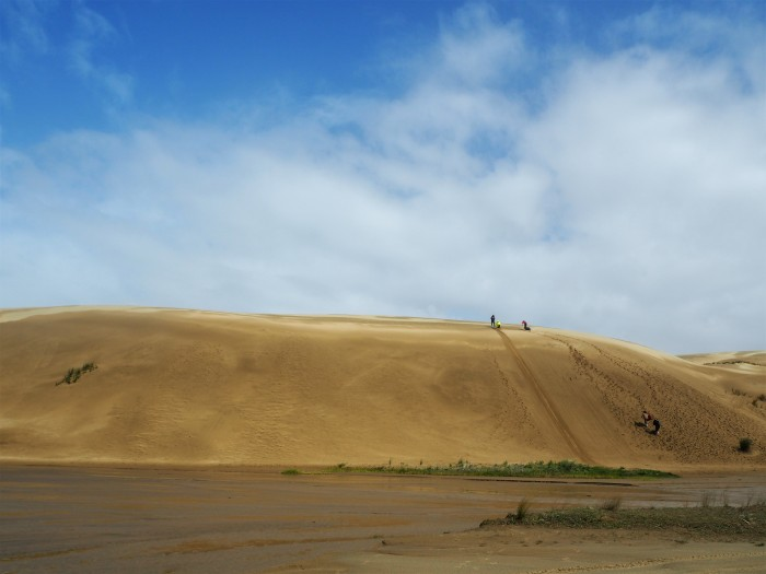 Te Paki Sand Dunes at Cape Reinga